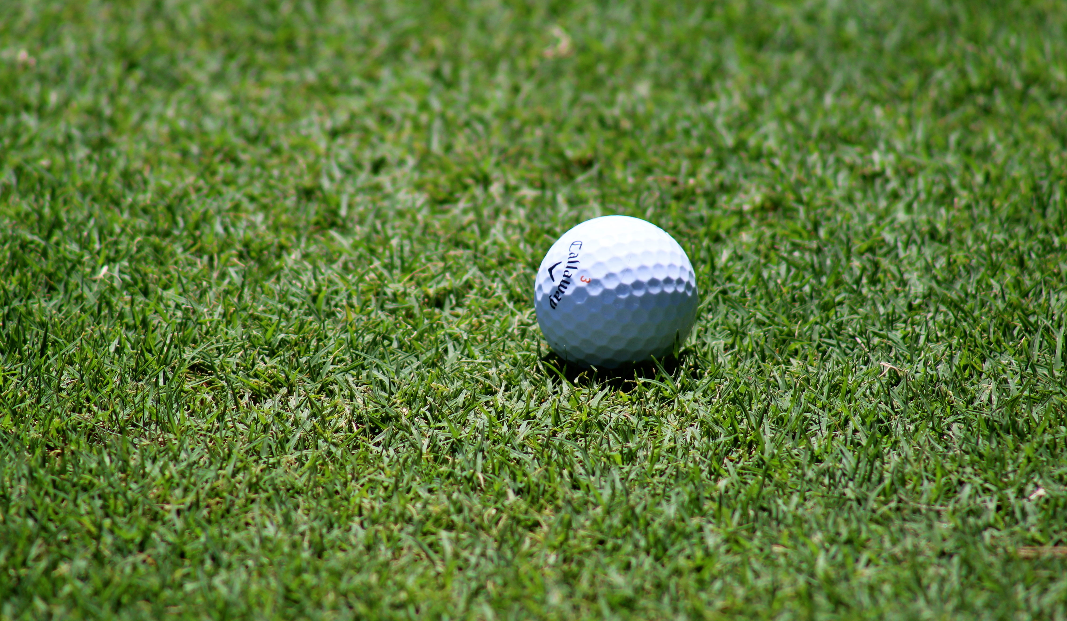 callaway golfbold